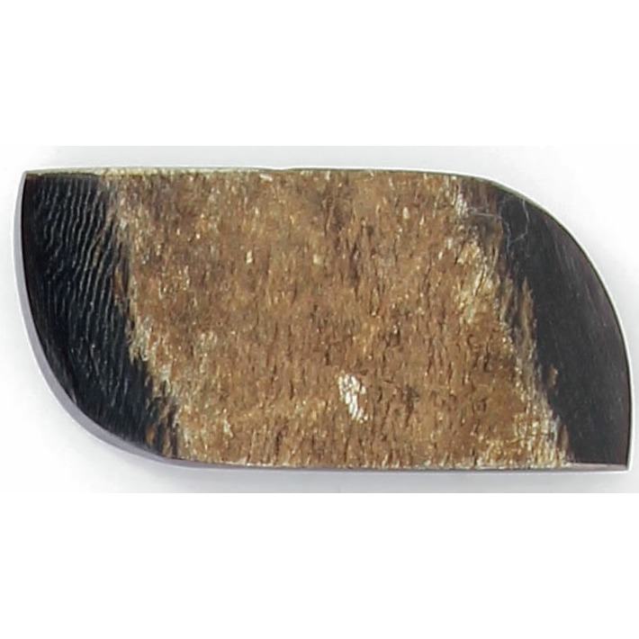 Bouton à pied pion corne naturel rectangle. 42mm à 52mm